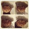 Kat_lynx